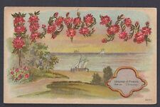 Ca 1916 POST CARD LANGUAGE OF FLOWERS ASTORS I LOVE YOU, MINT