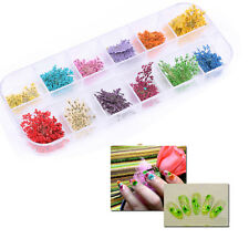 12 Colors Women DIY Real Dried Flowers For UV Gel Acrylic Nail Art Tips Beauty