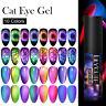LILYCUTE 9D Cat Eye UV Gel Nail Polish Soak Off Nail Art Magnetic Varnish Decor