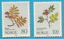Norwegen aus 1980 ** postfrisch MiNr.825-826 - Rosengewächse, Weihnachten!