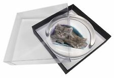 Kittens Under Blanket Glass Paperweight in Gift Box Christmas Present, AC-205PW