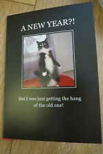 "Hallmark Happy New Year card ""A new Year?!"" cat"