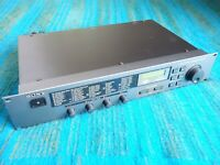 Sony DPS-V55 Multi Effect Processor 90's Vintage - New Internal Battery  - C102