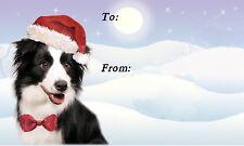Border Collie Dog Christmas Labels By Starprint - No 6 Design