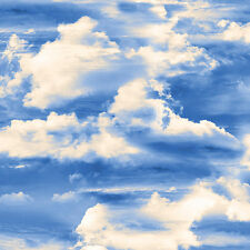 1 Half Metre length Heaven Sent Heavenly Sky Print Fabric - 8570-55  100% cotton