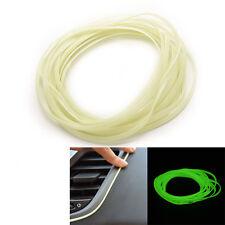 5M Car Auto Decoration Thread Styling Body Modify Decor Luminous Clip  ZPUS