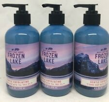 3 Bath & Body Works Frozen Lake Exfoliating Hand Soap Wash 8.3 Oz