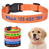 Nylon Embroidered Personalised Dog Collar Small Large Pet Custom Name ID XS S M