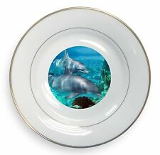 Dolphins Gold Rim Plate in Gift Box Christmas Present, AF-D3PL