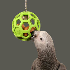 Papageienspielzeug  ! Foraging Rubber with Bell ! Foaraging Toy !