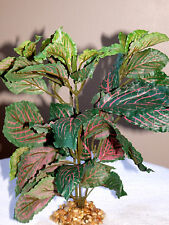"""9"""" MD Artificial Aquarium Silk NERVE PLANT & STONE BASE (Pink-Veined FITTONIA)"""