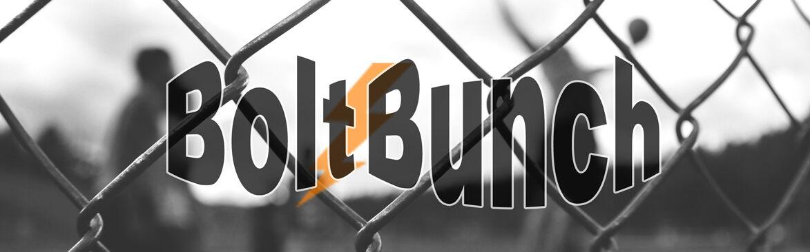 TheBoltBunch