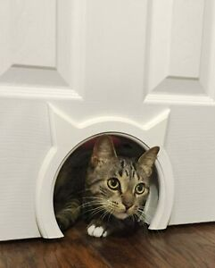 Cat Door in Wide Opening Size & Semi Glosses White Color with the Cutest Design