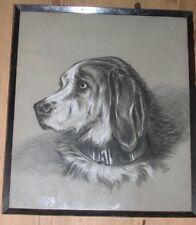 More details for rare antique bloodhound dog drawing 1892 signed orig frame