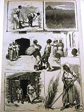 BLACK AMERICANA SAVANNA GEORGIA RICE FARM MILL 1883 Art Matted