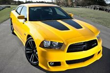 DODGE CHARGER HOOD INSERTS WITH OUTLINE 2011 2012 2013 2014  / 3M STRIPE FACTORY