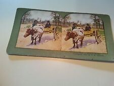 "African American farmers on a wagon Stereoviewer cards ""1897"""