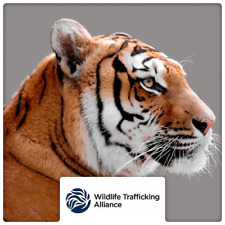 $100 Charitable Donation For: The Wildlife Trafficking Alliance