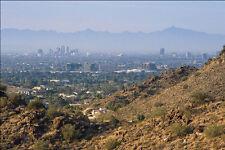 611089 Phoenix In Sun Valley Setting A4 Photo Print