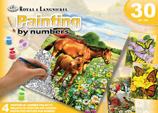 ROYAL LANGNICKEL Paint by Number 24pc Gift Set 4 Designs Horses Butterflies Bird