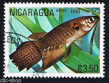 FLORA E FAUNA 1 FRANCOBOLLO PESCI NICARAGUA PTOROBELIAS LONGIPINN. 1981 timbrato