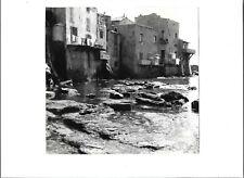 Photograph original photo Erbalunga Corsica 1959 FPP