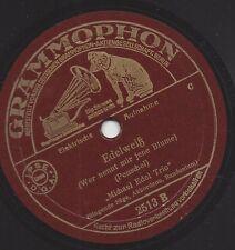Michael Edel Trio mit singender Säge : Bayrisch Zell + Edelweiss