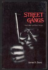 STREET GANGS YOUTH BIKER PRISON GANGS by James R. Davis 1982 INSCRIBED Book