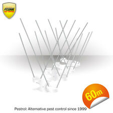 Bird Spikes - Polycarbonate 60 metre bundle (Pestrol Sydney Seller)
