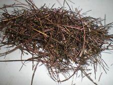 50 filaments plumes de paon 10 a 15 cm