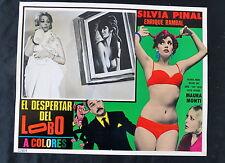 SEXY SILVIA PINAL El Despertar del Lobo MAURA MONTI N MINT LOBBY CARD PHOTO 1968