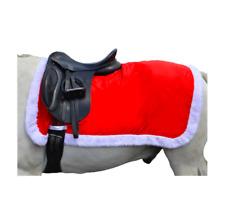 Hy Christmas Santa Exercise Sheet - Festive and Christmas Gift