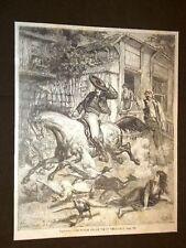 Cavallo imbizzarrito ed in fuga Vie di Vera Cruz o Bahia Brasile