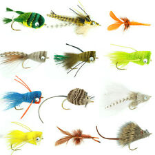 Bass Bug Collection - Set of 12 Bass Fly Fishing Flies - Poppers Divers Crawdad
