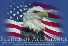 "Pledge of Allegiance Poster American Bald Eagle Large 35""x23"""