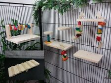 6 Item Playground See-saw, Shelves & Wood Gnaws for chinchilla, rat, degu cage