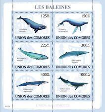 Whales Marine Life sea mammals Comoros Comores 2009 m/s Mi.2121-26 MNH #CM9119a