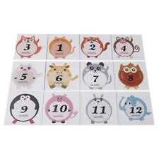 Photograph Birthday Stickers Gift Milestone 1-12 Monthly Baby Stickers Bl3