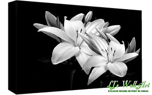Black & White Lilies Cotton Canvas Wall Art Picture Print - A1, A2 +sizes