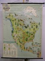 Schulwandkarte Amerika USA Vegetation Tiere vintage animals map 88x118cm ~1955