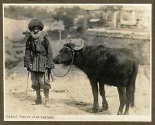 IMPERIAL RUSSIA, CAUCASUS PORTER WITH BUFFALO - ORIGINAL ca 1900's PHOTO