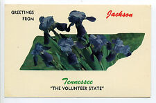 Greetings from Jackson TN Tennessee (Madison Co) floral outline of state
