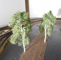 3 Birken, 120 mm hoch in Premium Qualität, jeder Baum ist ein Unikat