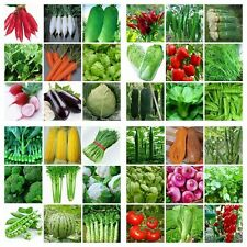 EMERGENCY SURVIVAL HEIRLOOM VEGETABLE GARDEN SEEDS NON GMO / HYBRID ORGANIC LOT