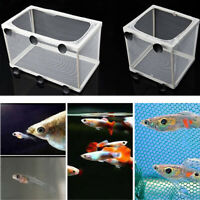 Aquarium Fish Tank Guppy Breeding Breeder Baby Fry Net Trap Box Hatchery L/S