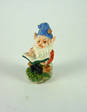 Dollhouse Miniature Terrarium Tiny Gnome Reading, A4529