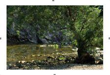 Photo Eté - Sommer  Collection Les 4 Saisons - Nature in 4 seasons