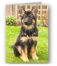 German Shepherd Puppy Greeting Card - Dog Alsatian