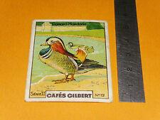 CHROMO 1936 CAFES GILBERT OISEAUX BIRDS CANARD MANDARIN