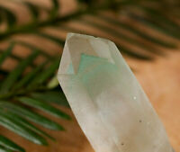 GREEN PHANTOM QUARTZ Crystal Point - Mini, S, M, or L Size - E0068